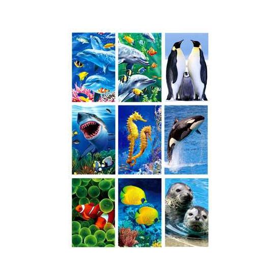 3D dierensticker set zee