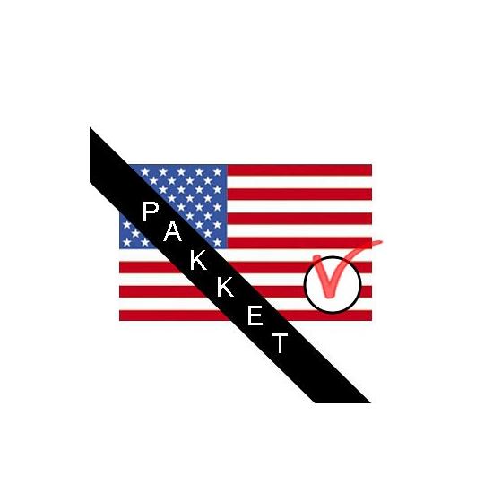 Amerikaanse verkiezingen versiering