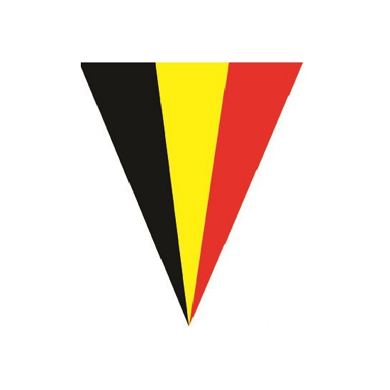Feestdecoratie Belgie vlaggenlijn 5 meter