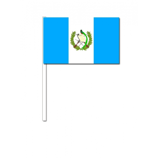 Handvlag Guatemala 12 x 24 cm