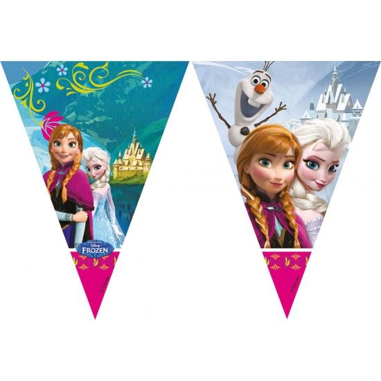 Kinderverjaardag Frozen vlaggenlijn 2 meter
