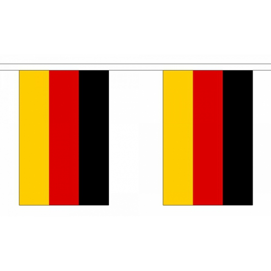 Luxe Duitsland vlaggenlijn 9 m