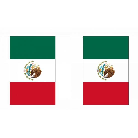 Luxe Mexico vlaggenlijn 9 m