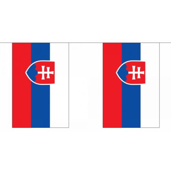 Luxe Slowakije vlaggenlijn 9 m