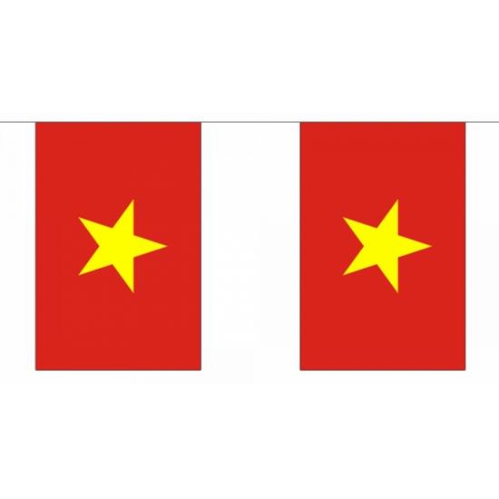 Luxe Vietnam vlaggenlijn 9 m