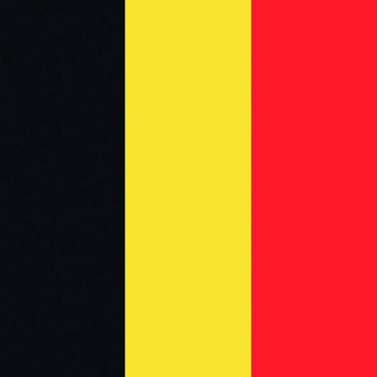Papieren servetten Belgische vlag