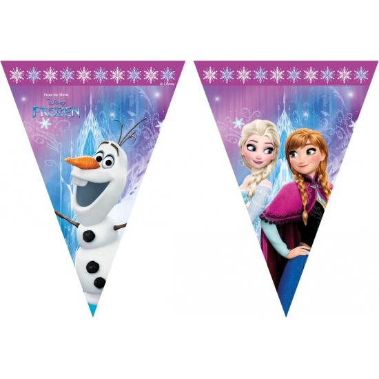 Plastic Frozen vlaggenlijn