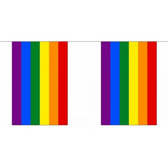 Polyester regenboog vlaggenlijn 9 m