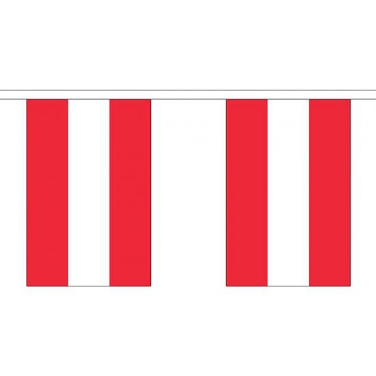 Polyster vlaggenlijn Oostenrijk 3 m