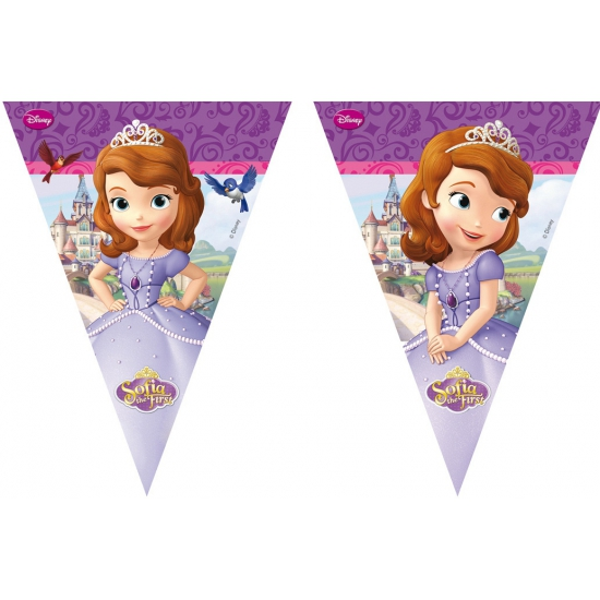 Prinsesje Sofia vlaggenlijn 3 meter
