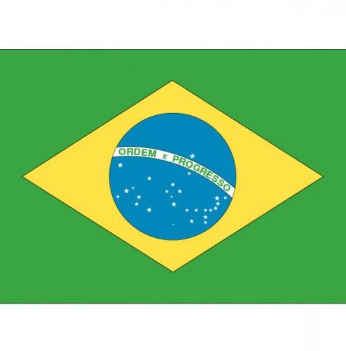 Stickers Brazilie vlaggen