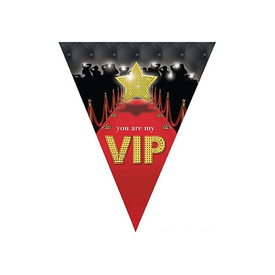 VIP vlaggenlijn 5 meter