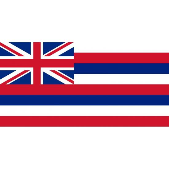Vlag Hawaii met ophangringen 90 x 150 cm