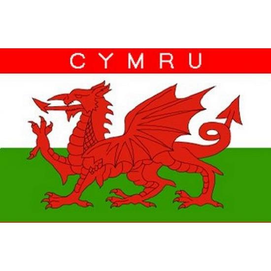 Vlag Wales met ophangringen 90 x 150 cm