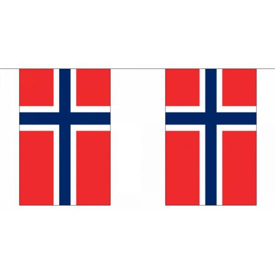 Vlaggenlijn Noorwegen 9 meter