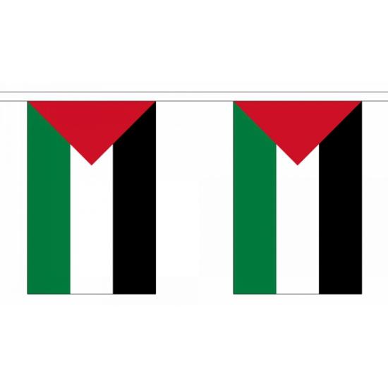 Vlaggenlijn Palestina 9 m
