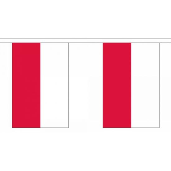 Vlaggenlijn Polen 9 meter