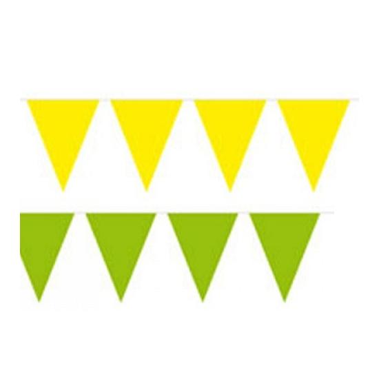 Vlaggenlijnen set Brazilie kleuren