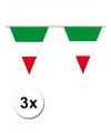 3x mega vlaggenlijn italie 10 meter