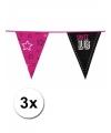 3x sweet 16 vlaggenlijn