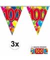 3x vlaggenlijn 100 jaar met gratis sticker