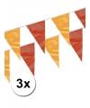 3x vlaggenlijn rood en geel 4 meter