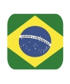 Bierviltjes braziliaanse vlag vierkant 15 st