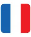 Bierviltjes franse vlag vierkant 15 st