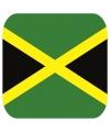 Bierviltjes jamaicaanse vlag vierkant 15 st