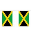 Luxe jamaica vlaggenlijn 9 m