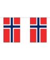 Luxe noorwegen vlaggenlijn 9 m