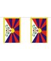 Luxe tibet vlaggenlijn 9 m