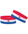 Supporter armband paraguay