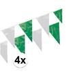 4x plastic vlaggenlijn groen wit