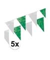 5x plastic vlaggenlijn groen wit