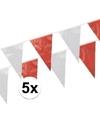 5x vlaggenlijnen rood wit 10 meter