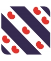Bierviltjes friese vlag vlag vierkant 15 st