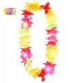 Hawaii bloemenkrans