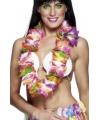 Tropische hawaii slingers colors