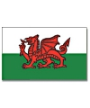 Vlag Wales polyester 90 x 150 cm